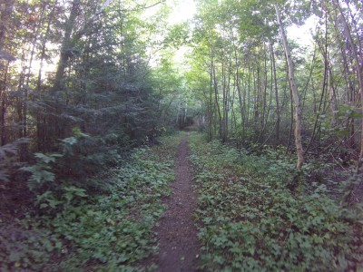 Hiking path in Rabbit Blanket camp site